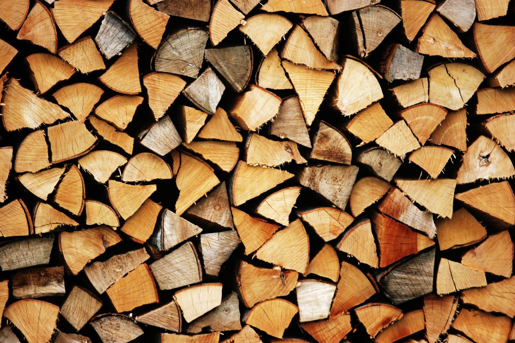 fresh firewood ready for the campfire
