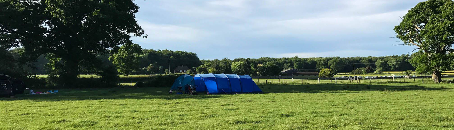 small tent pitch in a field at selden farm camping campsite